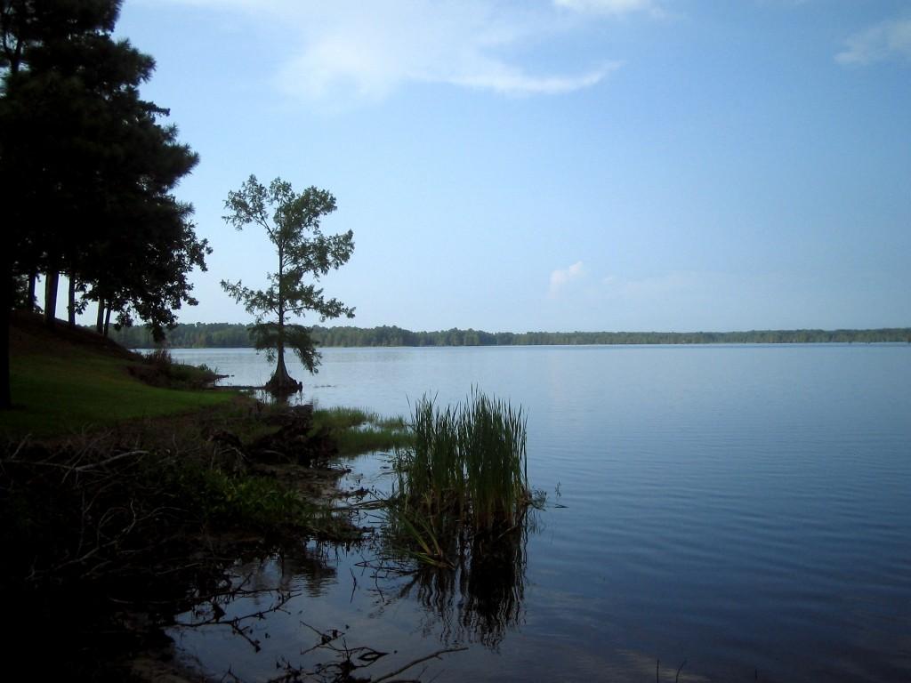 Lake Bogue Homa